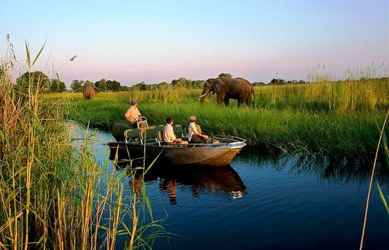 Okavango Delta, the Most Beautiful Desert in the World