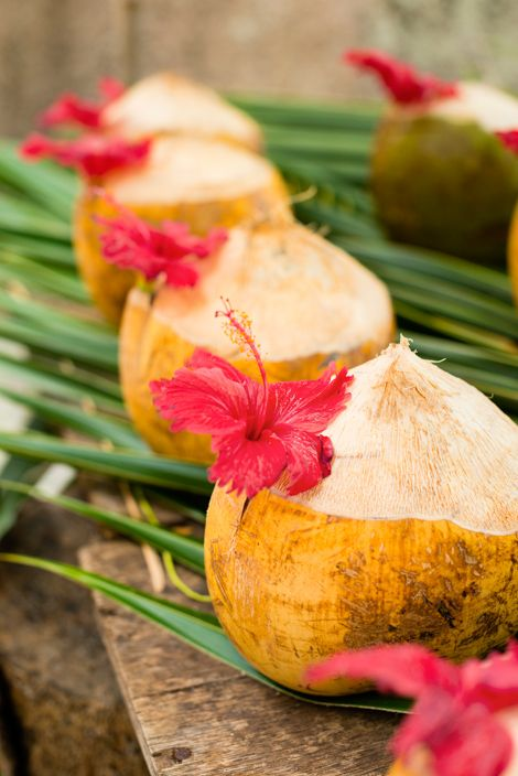 Yum! I love drinking coconut water straight from the source. // Coconuts accessorised with hibiscus flowers,  The Seychelles on a shoestring