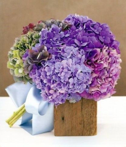 Hydrangea are beautiful wedding flowers! Depending on the time of year, Hydrangea can be found in several different colors at GrowersBox.com.