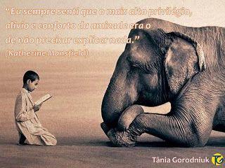 Você faz a Diferença: Amizade, nosso maior tesouro!