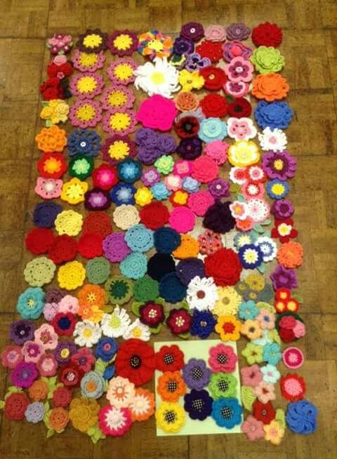 Flores, muchas flores