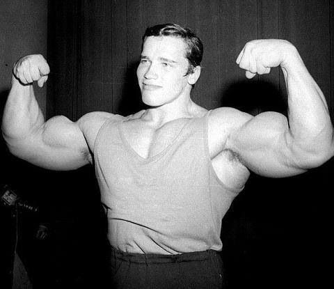 A young Arnold Schwarzenegger as he looked when first ... Arnold Schwarzenegger Movies