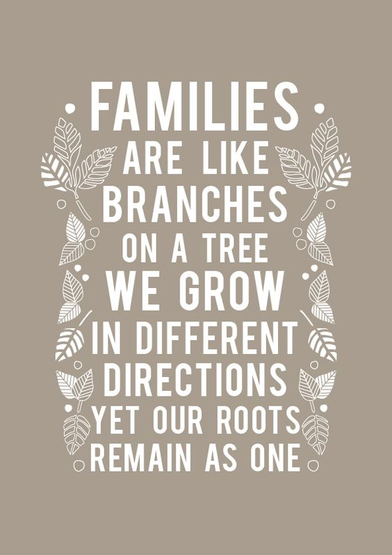 """Great Idea for Family Reunion Photo Book Quotes. """"Families are like branches on a tree. We Grow in different directions yet our roots remain as one."""""""