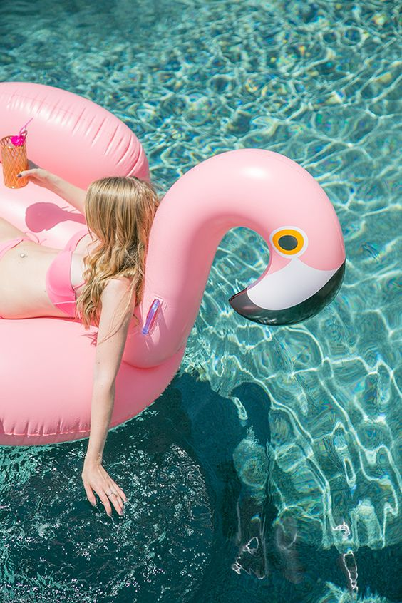 Flamingos, Pools and Pool parties on Pinterest