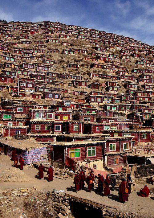 Tibetan nun colony  by Wu Jianjiang