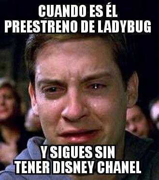 Memes De ... Miraculous Ladybug - #84