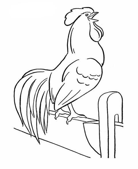 Animal Templates Free Premium Templates Farm Animal Coloring Pages Farm Coloring Pages Animal Coloring Pages