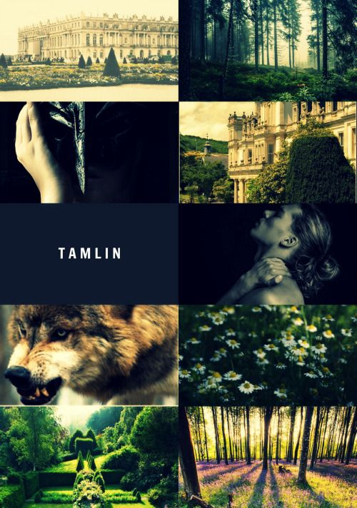 Tamlin | A Court of Thorns and Roses by Sarah J Maas:
