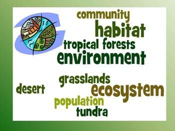 This study guide and corresponding quiz covers important vocabulary about ecosystems for third grade science. A wordle with these vocabulary words to post in the classroom is also included.     The following words are included: environment, ecosystem, habitat, population, community, grasslands, desert, tundra, tropical forests $
