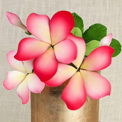 Hawaiian Bloomed Plumeria Toppers - Pink