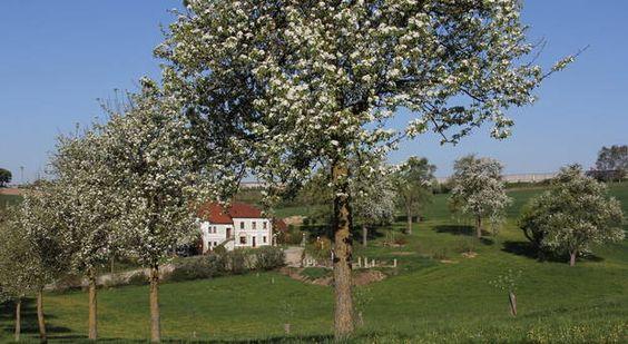 Hauersdorf bei Amstetten/Austria via Wolfgang Atzenhofer