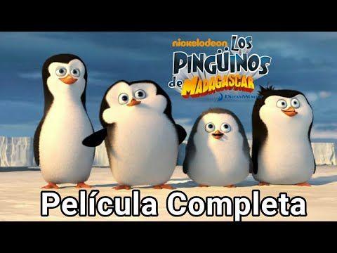Los Pinguinos De Madagascar Pelicula Completa En Espanol Latino Por Partes Youtube Pinguinos De Madagascar Peliculas Completas Peliculas