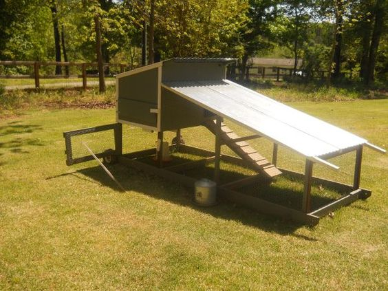 Portable chicken coop chickens pinterest portable for Portable chicken yard