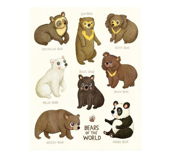 Bears Of The World Bear Illustration Art Print Animal Etsy In 2020 Bear Illustration Bear Nursery Art Animal Illustration