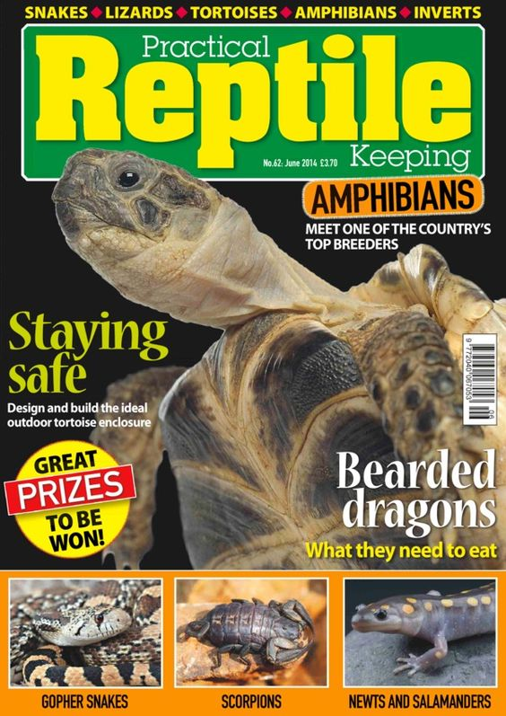 Practical Reptile Keeping  Magazine - Buy, Subscribe, Download and Read Practical Reptile Keeping on your iPad, iPhone, iPod Touch, Android and on the web only through Magzter