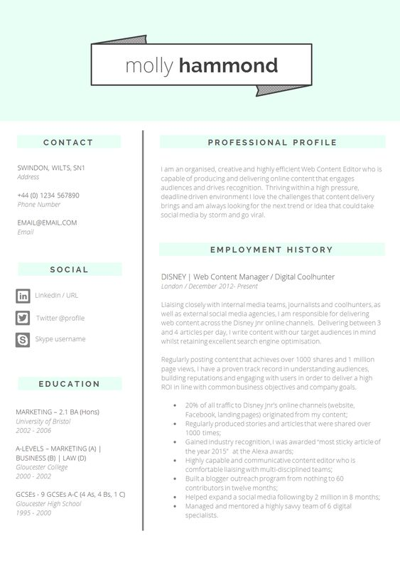 Lovely, clean and frrresssh CV template #CVDesign #CVTemplate - employment history template