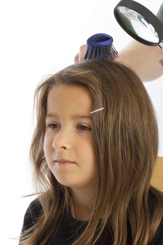 Kopfläuse bekämpfen ohne Chemie und preiswert ~ getting rid of head lice without chemicals