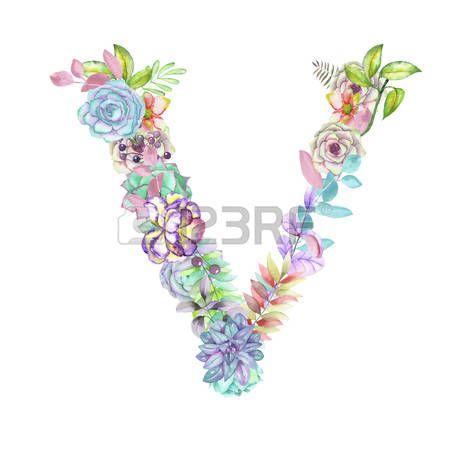 alfabeto de flores aisladas sobre fondo blanco: Capital de la letra V de flores…