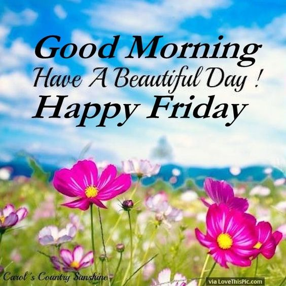 good morning have a beautiful day happy friday weekdays