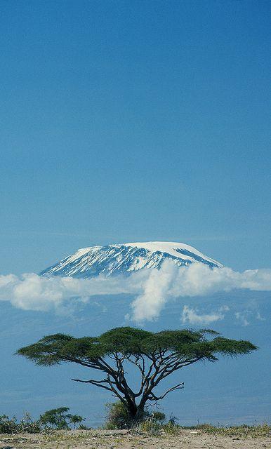 Mt. Kilimanjaro, Tanzania - stunning both at the base and the summit