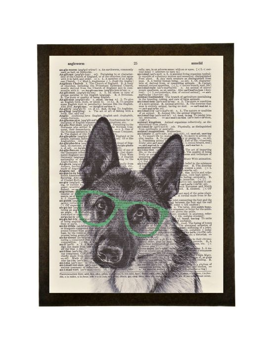 German Shepherd with Sunglasses - Ready to hang vintage dictionary wall art by IlicMajaDesign on Etsy https://www.etsy.com/listing/234554364/german-shepherd-with-sunglasses-ready-to