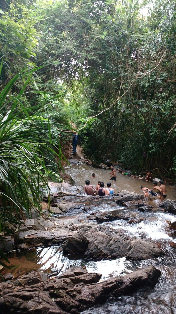 Adyar Waterfalls How To Get There And What Not To Do Mangalore Karnataka India Mangalore Karnataka Waterfall