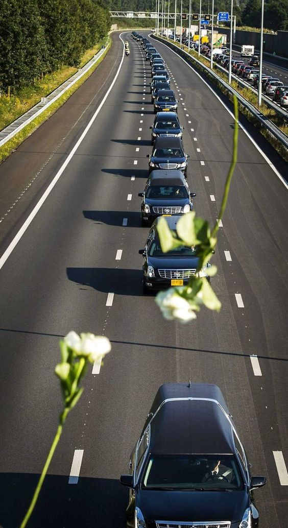 Hearses carrying the bodies of some victims of Malaysia Airlines MH17 off Airbase Eindhoven, Netherlands. July 23, 2014.: