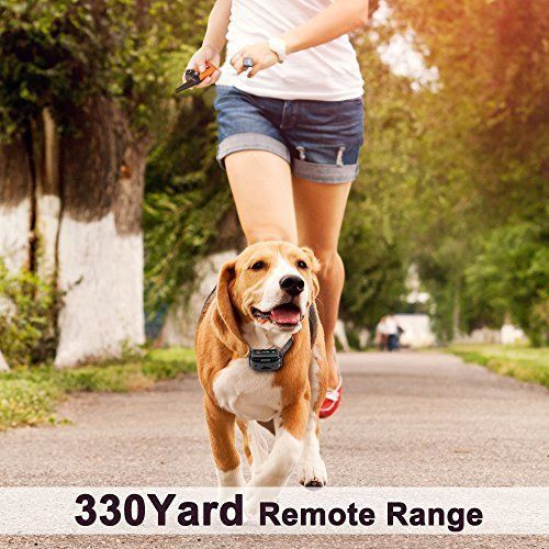 Waterproof Rechargeable Dog Shock Collar 900 Ft Remote Dog Dog
