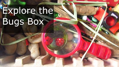 The Box to play, enact, learn about ladybugs. Based on The Grouchy Ladybug by Eric Carle