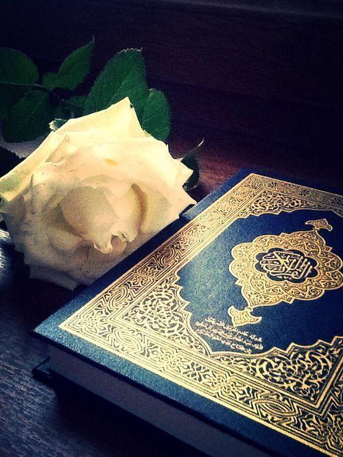 صور مصاحف جميلة صور من القران الكريم اخبار العراق Quran Quran Book Quran Wallpaper