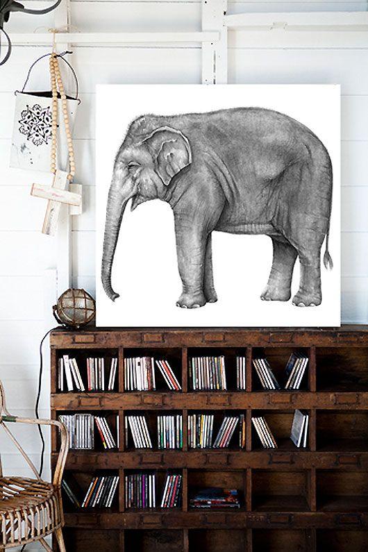 wooden book shelves + elephant