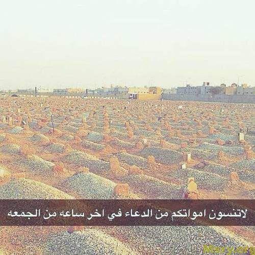 3akjwkiqap38fm