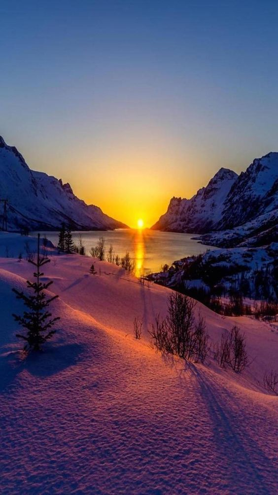 Winter sunset 💛