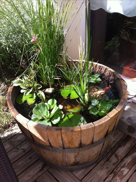 Mini bassin dans un demi tonneau jardin pinterest water garden permacu - Mini bassin de jardin ...