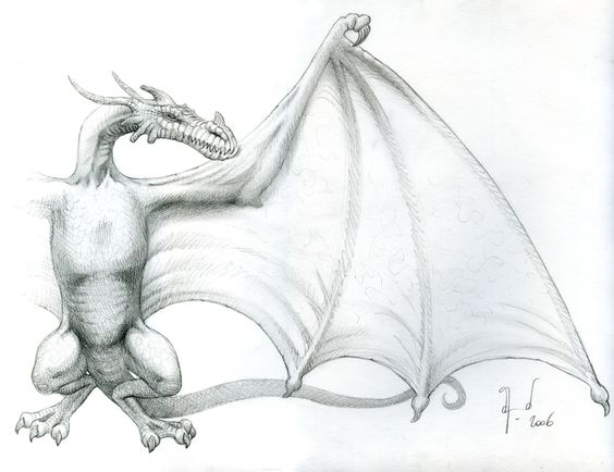 Dragon Anatomie 2.jpg (847×652)