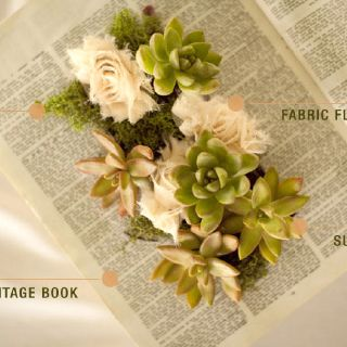 Vintage books with succulents spilling from the pages... Ok Kaytlyn, I think we have found upon a great idea!