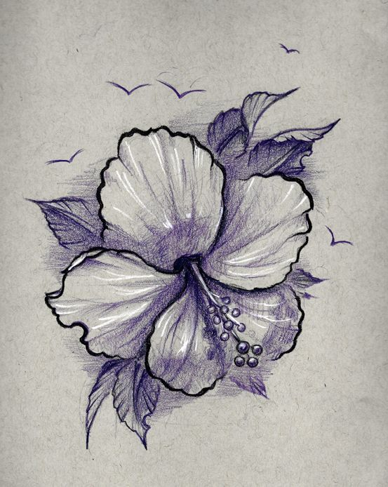 Hibiscus Flower Tattoo Design By Dorian B The Whole Flash Set At Https Jennyclarkedesign Com Hibiscus Flower Tattoos Hibiscus Tattoo Hibiscus Flower Drawing