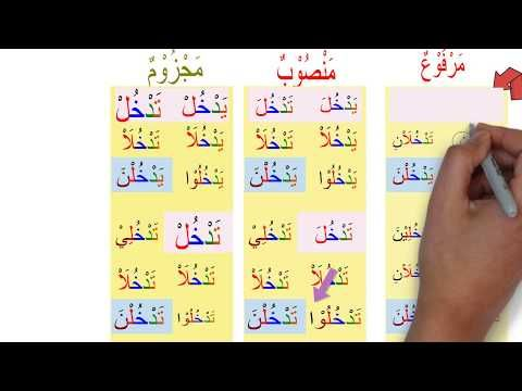 Lesson 12 Understanding Arabic Verb Conjugation فعل مضارع Youtube Verb Conjugation Arabic Verbs Verb