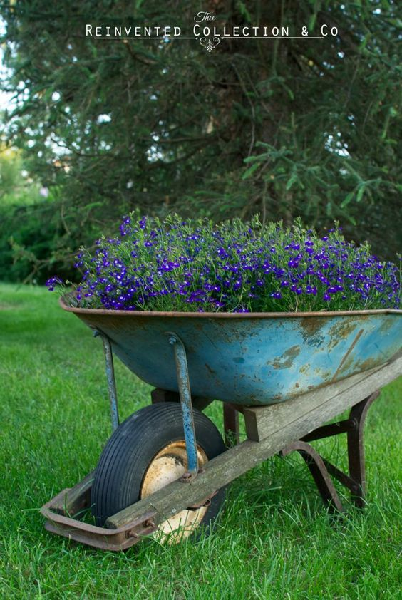 Country Charm | Rusted Wheelbarrow | Flower Pots | by Olivia | Reinvented…