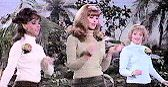 Gilligan's Island: Ep-The Honey Bees