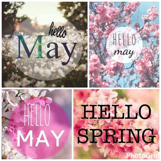 A new month,new expectations, hopes, beginnings. HELLO MAY, WELCOME MAY, SPRING, HOSGELDIN MAYIS, MAYIS, İLKBAHAR