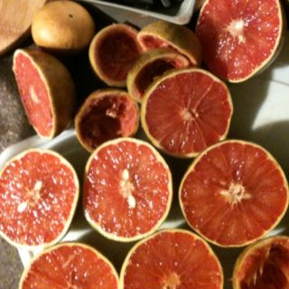Grapefruit from my mothers trees