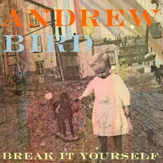 New Andrew Bird