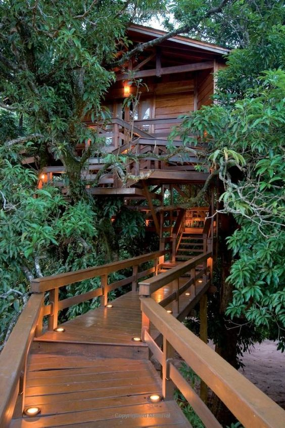 Animal Planet Provides Us The Tree House Masters And Their Wonderful Tree  Houses