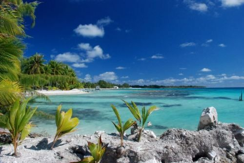 Beach! paradise