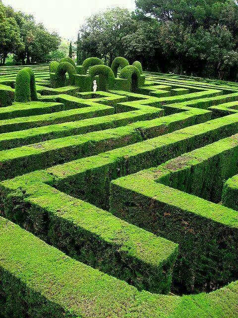 Garden of maze