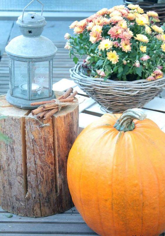 Fahéjat, lámpással, narancssárga krizantémok és sütőtök