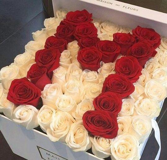Fotografiya Luxury Flowers Beautiful Rose Flowers Rose Arrangements