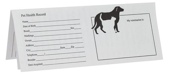 printable puppy shot records pet records for dog cats health instruments lucy 39 s dog. Black Bedroom Furniture Sets. Home Design Ideas