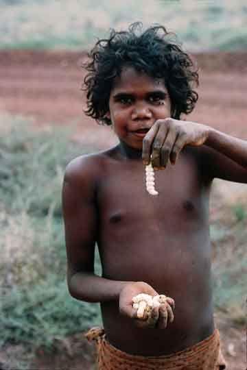 ♥ Australian Bush Tucker ~ Witchetty Grubs ** Young aboriginal boy with witchetty grubs.